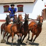 Ryttare på hästar II
