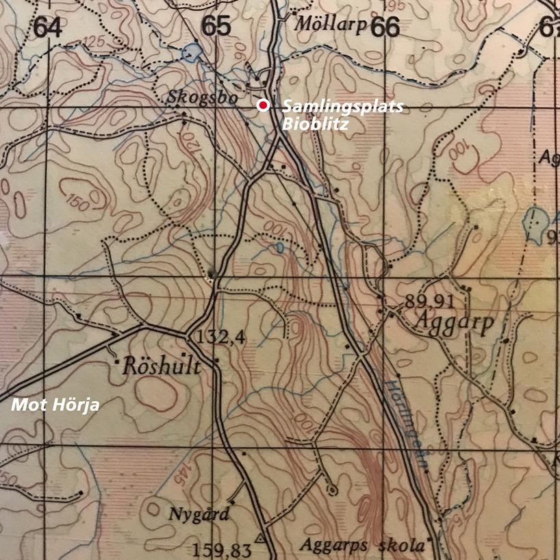 Bioblitzen genomfördes inom området Aggarp-Röshult-Möllarp i Hässleholms kommun.