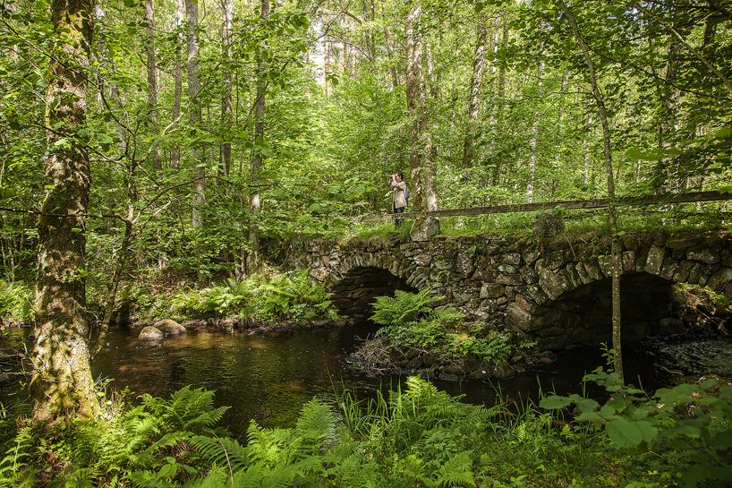 2017-06-15: Stenbron över Hörlingeån vid Aggarp, byggd omkring 1870 enligt lantbrukare Haraldsson.