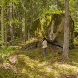 Siggaboda naturreservat II 170706