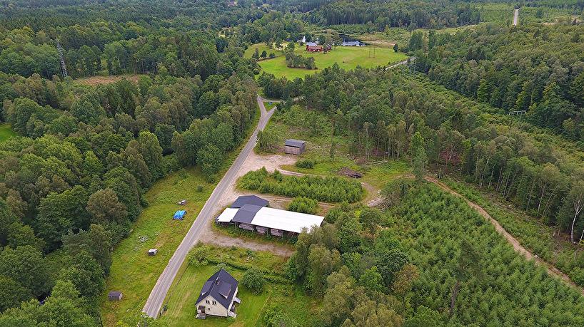 2017-08-11: Virkesupplaget vid f d Hillarps såg med utsikt mot dr Mårtenssons gård och den nya dam-men.