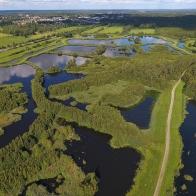 Drönare Magle våtmark II 170814