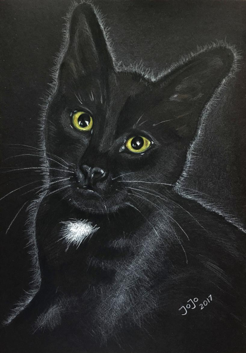 Katten Simpson 2017, vit krita på svart kartong.