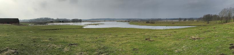 2018-02-19: Våtmarkerna vid Lunkeskog