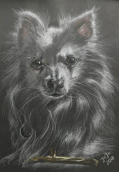 Hund I (mars 2018)