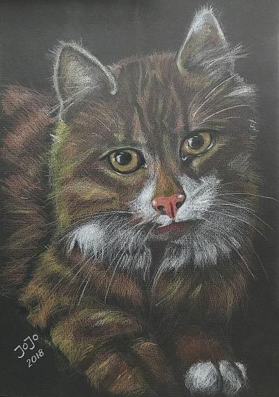 Katt I (mars 2018)
