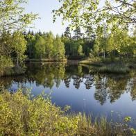 Eskilsjön II 180514 kopia