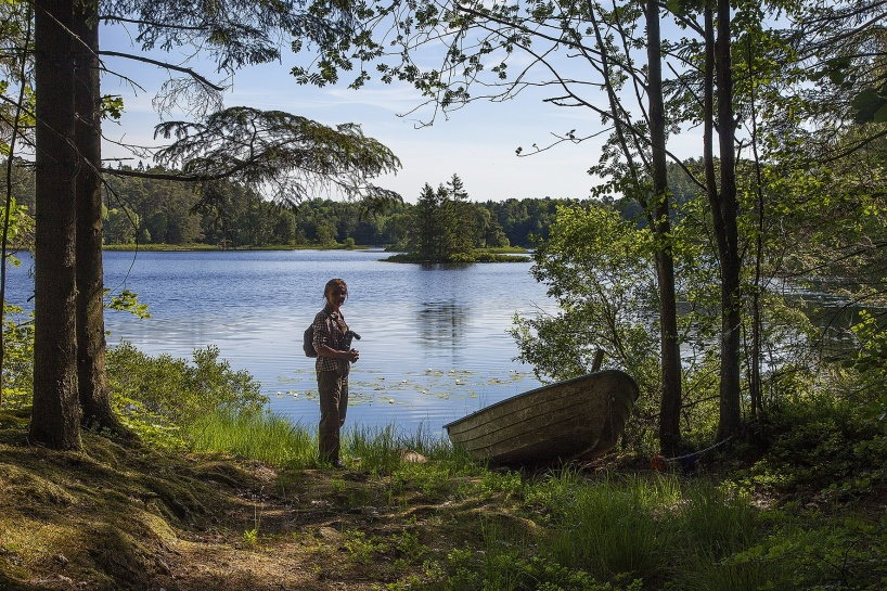 2018-06-09: Jola vid Gårdsjöns södra del.