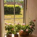 Hovdala Orangeriet fönster I 180707 kopia