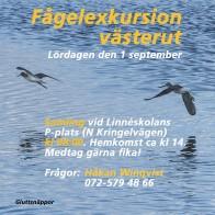Fågelexkursion 180901 kopia