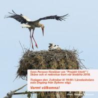 Föreläsning Stork 181001 kopia