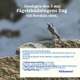 Fågelskådningens Dag 190505 kopia