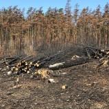 Branden vid Åbuamossen 190705