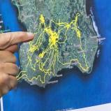 GPS-stork i Skåne I 200822 kopia
