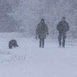 Vandrare i snö II 210113