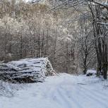 Vinterlandskap II 210116 kopia