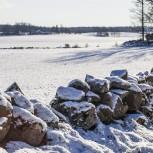 Vinterlandskap III 210130 kopia