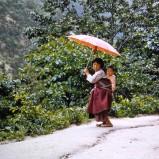 Flicka med paraply BI 1953 kopia