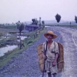 Lantbrukare med pipa I 1953 kopia