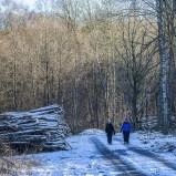 2. Vinterpromenad Magle våtmark II 210213 kopia