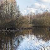Stoby våtmark I 210314 kopia
