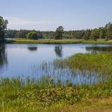 Vittsjön, östra delen I 210616 kopia