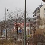 MSL_Stockholm1