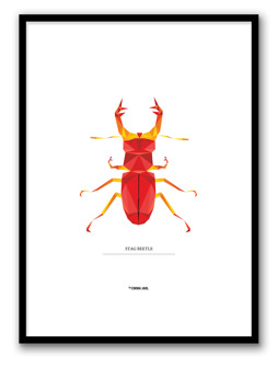 STAG BEETLEPOSTER