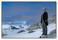 Moj of the Antarctic, 2005
