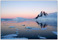 Wilhelmina Bay, Antarctic Pennisula 2005