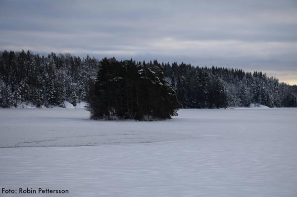 Den så kallade Rakskallen. Varför heter ön så mån tro?