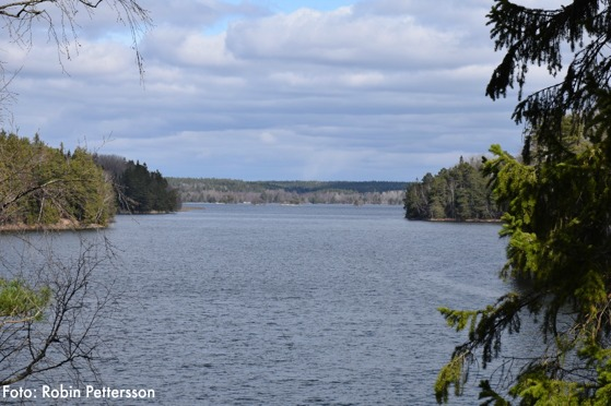 Utsikt från länsmans udde ut mot stora och lilla Kalskär