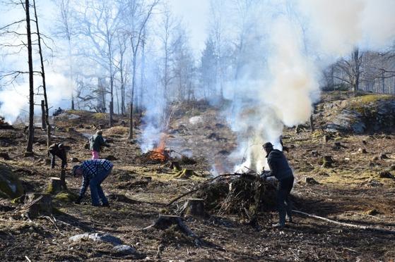 Röken låg tjock över skogarna i omgivningen.