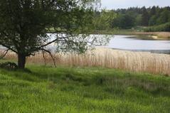 Lämshaga, från södra sidan. Maj. Foto: Eva Stenvång Lindqvist