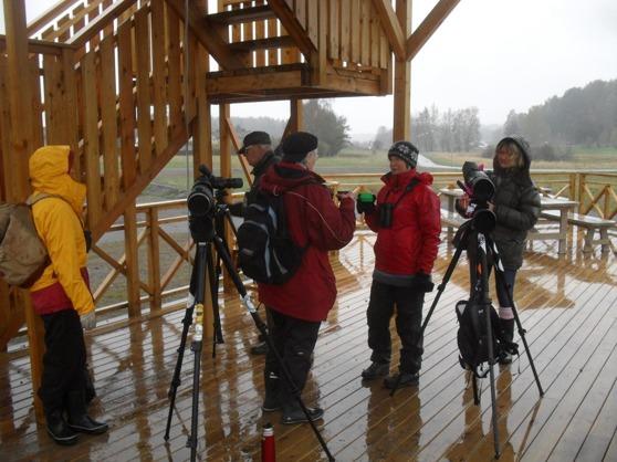 Medlemmar i Värmdö Fågelklubb intervjuas av Eva-Lotta Sigurdh ( t h), Värmdö Paper.