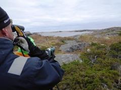 Mats Nilsson i VFK spanar ut över de hällar  intill fyrbyn där en dvärgsävsparv - ny Sverigeart -  kunde ses av och till 13-16 oktober 2016. Foto: Eva Stenvång Lindqvist