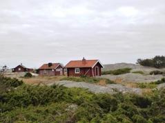 Fiskestugor i fyrbyn, som ligger på öns östra del. På respektfullt avstånd från husen spanas det om hösten härifrån mot ost-nordost. Foto: Eva Stenvång Lindqvist