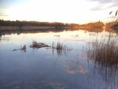 Vitträsk, den största insjön på Runmarö. Foto: Anders Haglund