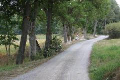 Längs med Farstaviken går fina promenadvägar. Foto: Eva Stenvång Lindqvist