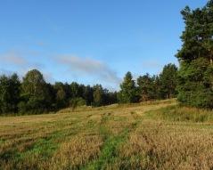 Södra Säbyfälten. Foto Sören Bevmo