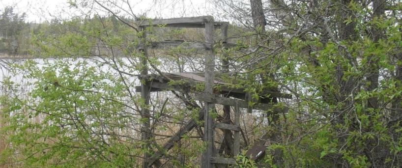 Siggesta träsk med det idag förfallna fågeltornet. Foto Sören Bevmo