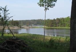 Slängen, Torpe-Infjärden i bakgrunden. Foto: Sven Faugert