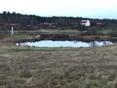 Lämshaga i november. Foto: Eva Stenvång Lindqvist