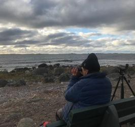 Tom Arnbom, ordförande i Värmdö Fågelklubb, spanar ut över havet.  Foto: Martin Olgemar