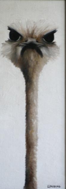 Herr struts 60 x 22 cm 2.000 kr