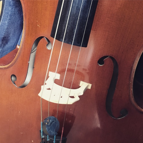 The privilege of playing the cello when teaching!