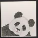 Panda II 40x40cm 1.200SEK