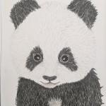 Panda I 30x40cm 1.200SEK