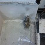Asbest i golv