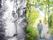 Bröllop Skärgårdsbröllop Finnhamn Fotograf Bröllopsfotograf Michaela Edlund Kelas bilder 6